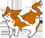 猫の頭頸部掻爬痕